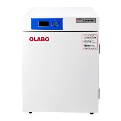 电热恒温培养箱DHP-9080
